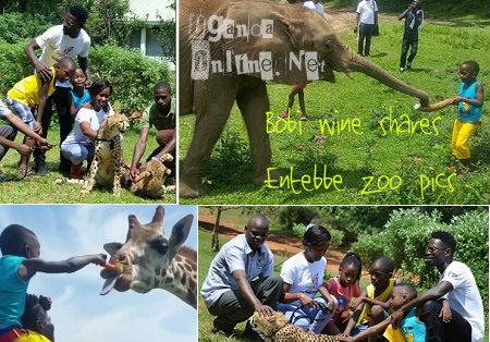 Bobi Wine shares Entebbe Zoo pics