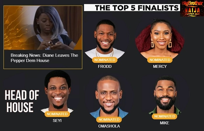 Frodd, Mercy, Seyi, Omashola a nd Mike are the BBNaija season 4 finalists