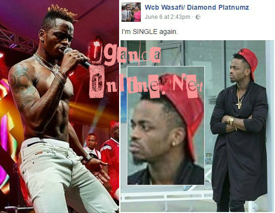 Diamond Platnumz says he is single again