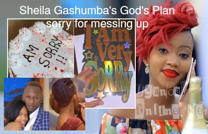 God's Plan said sorry in English for messing up