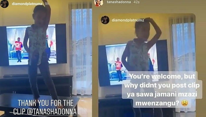 Tanasha Donna's response to Diamond Platnumz