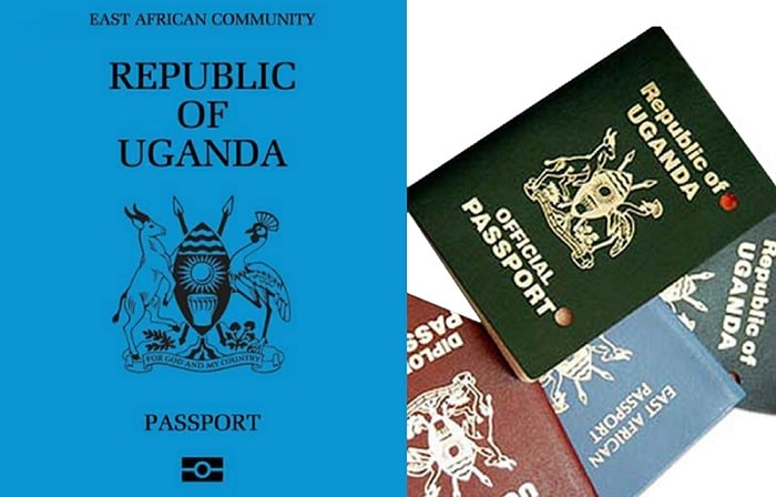 The ordinary electronic passport is sky blue in colour