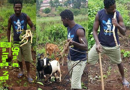 Bobi Wine grows Omulondo Roots