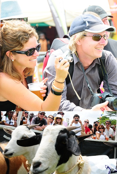Tourists enjoying every moment with the goats