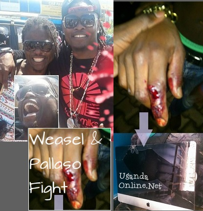 Weasel and Pallaso fight
