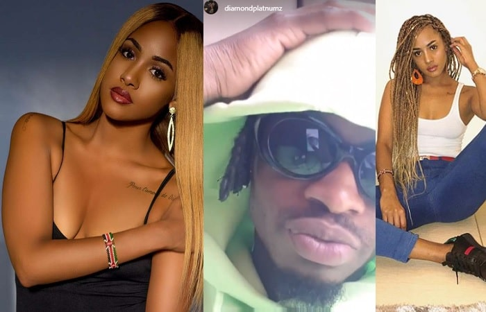 Tanasha Donna and Diamond Platnumz are an item