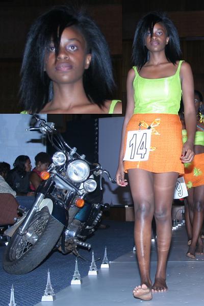 Top Model Trend Model