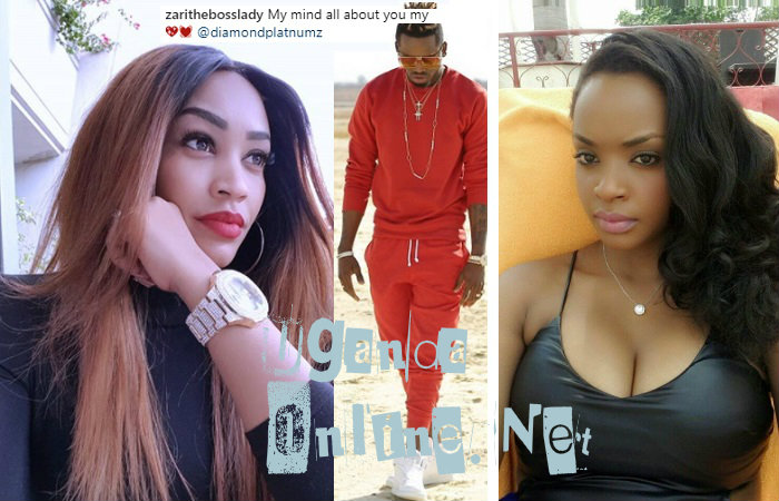 Zari has a new rival to deal with